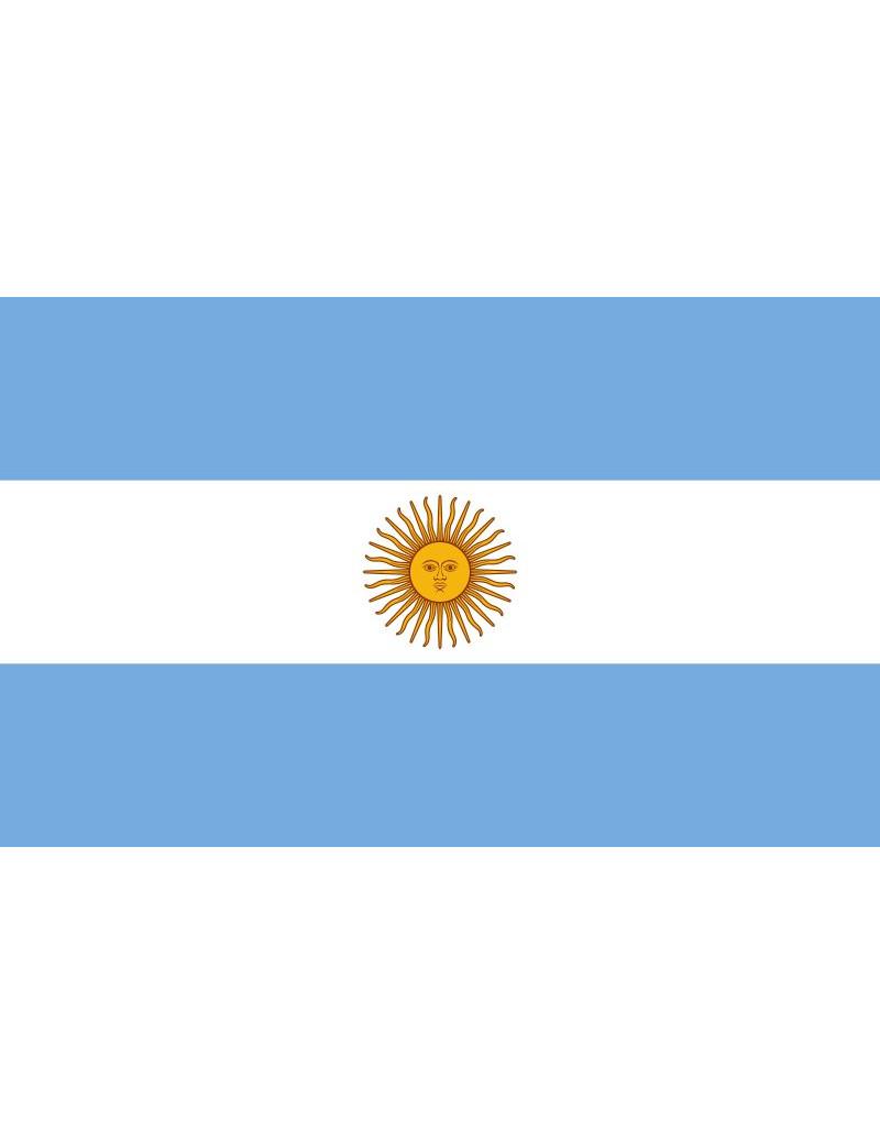 Bandiera - Argentina - 30x20 cm