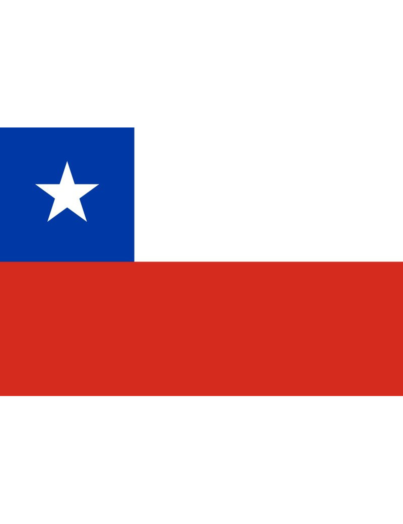 Bandiera - Cile - 30x20 cm