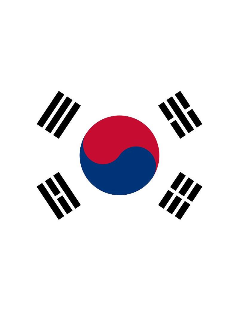 Bandiera - Corea del Sud - 30x20 cm