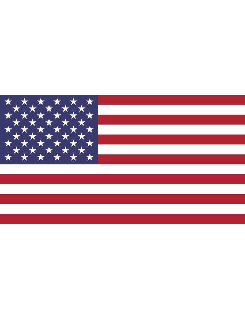 Bandiera - U.S.A. - 20x15 cm