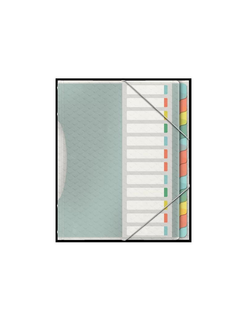 Classificatore Colour'Ice Esselte - 12 Scomparti - 26,6x32 cm - 626256 (Multicolor)